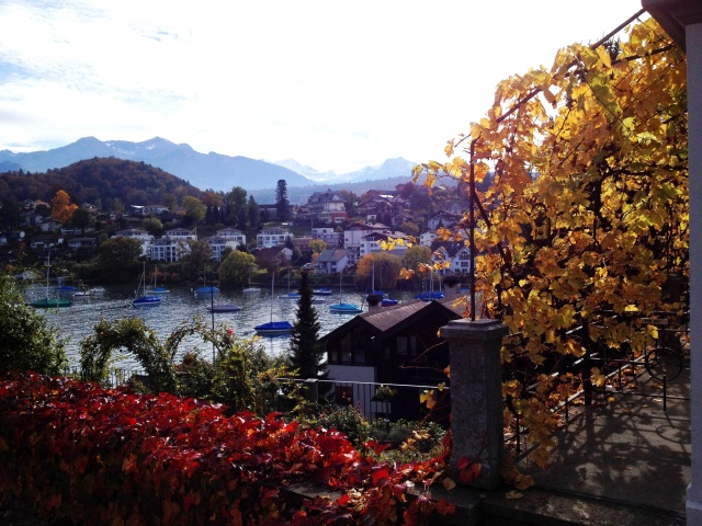 Village and harbor of Spiez viewed from Castle walk